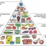 Ποιές τροφές ενδείκνυνται για τις ασθένειες.